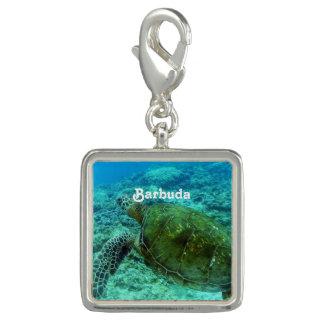 Barbuda que bucea dijes con foto
