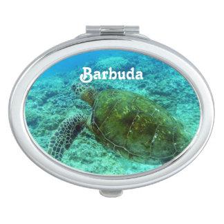 Barbuda que bucea espejos de viaje