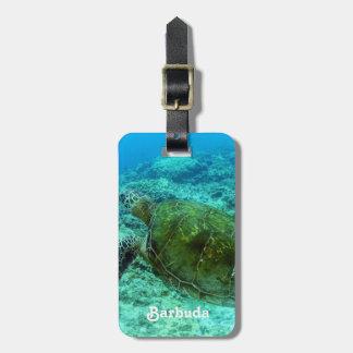 Barbuda que bucea etiquetas bolsa