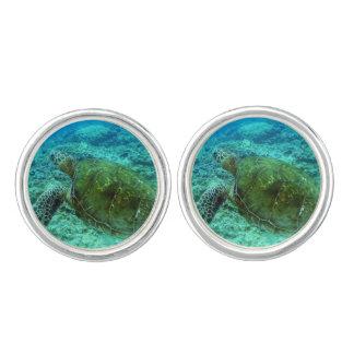 Barbuda que bucea gemelos