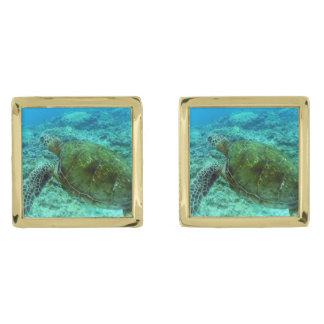 Barbuda que bucea gemelos dorados