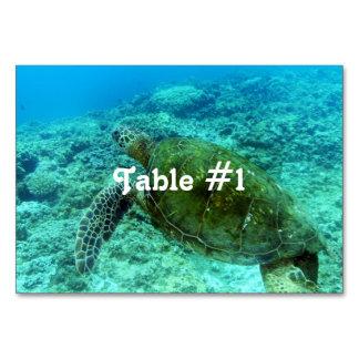 Barbuda Snorkeling Card