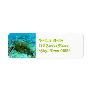 Barbuda Snorkeling Label