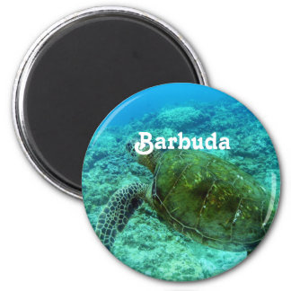 Barbuda Snorkeling Magnet