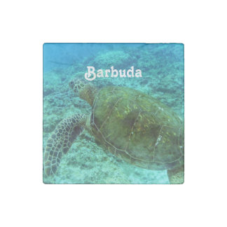 Barbuda Snorkeling Stone Magnet