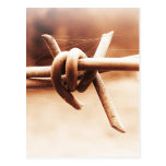 Barbwire and Spider Web in Sepia Post Card