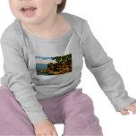 Barcas aux. de Pointe del pulgar de Michigan Camiseta