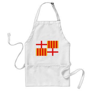 barcelona city flag spain adult apron