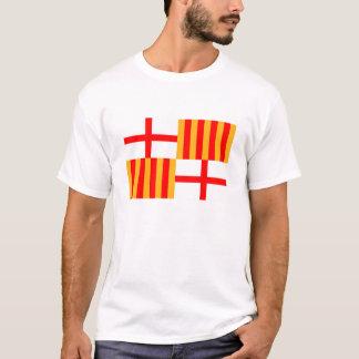 barcelona city flag spain T-Shirt