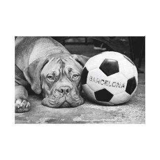 Barcelonaa's soccer fanatic dog canvas print
