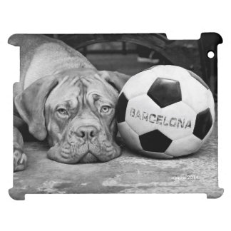 Barcelona's soccer fanatic dog. Barcelona, Spain Cover For The iPad