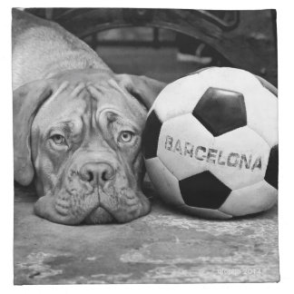 Barcelona's soccer fanatic dog. Barcelona, Spain Servilletas De Papel