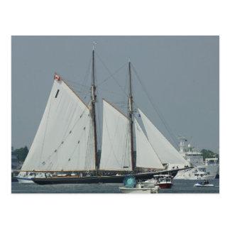 Barco de navegación en Norfolk Tarjeta Postal