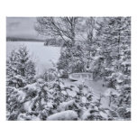 Barco de pesca, bosque del invierno, nevada del na posters