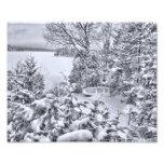 Barco de pesca, bosque del invierno, nevada del na fotografias