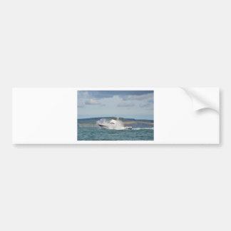 Barco de pesca del ocio pegatina para auto