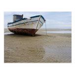 Barco de pesca trenzado tarjetas postales