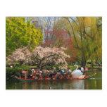 Barco del cisne del jardín público de Boston en pr Postales