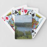 Barco del río Misisipi Barajas De Cartas