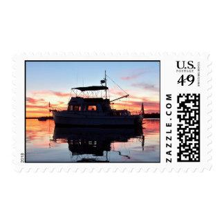 Barco rastreador magnífico de los bancos en la sellos