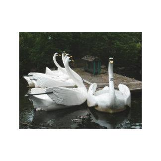 Barcos blancos del cisne impresion en lona