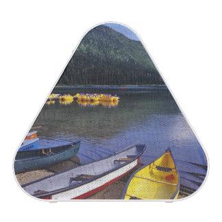 Barcos de alquiler en el lago cameron en los lagos altavoz bluetooth