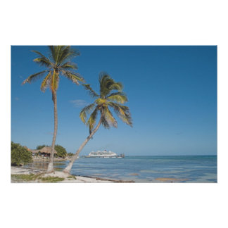 Barcos de cruceros en maya de la costa impresiones