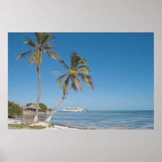 Barcos de cruceros en maya de la costa póster