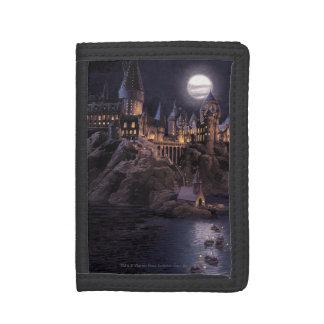 Barcos de Hogwarts a escudarse