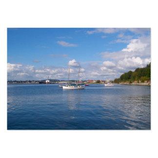 Barcos de la bahía de Bellingham Tarjetas De Visita Grandes