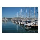 Barcos de Sausalito Tarjeton
