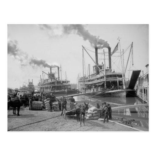 Barcos de vapor en Vicksburg, 1910 Postal