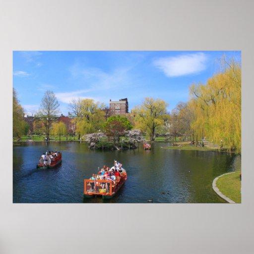Barcos del cisne del jardín público de Boston en p Impresiones