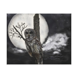 Bard Owl on Branch in Night Sky on Canvas
