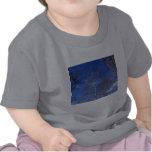 Bare Birch T Shirts