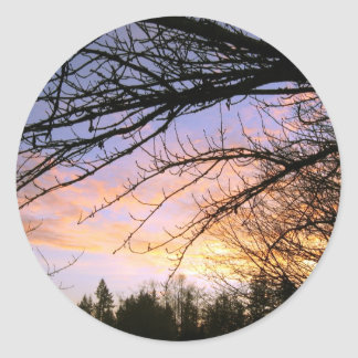Bare Branches against a Spectacular Sunset, photo Classic Round Sticker