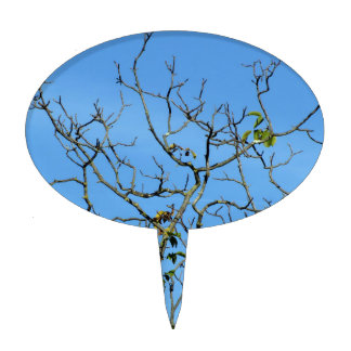 Bare chestnut tree in a sunny day cake topper
