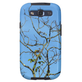 Bare chestnut tree in a sunny day samsung galaxy SIII case