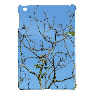 Bare chestnut tree in a sunny day iPad mini covers
