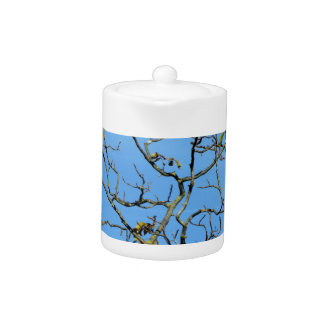 Bare chestnut tree in a sunny day teapot