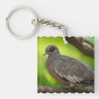 Bare Eyed Pigeon Square Acrylic Key Chain