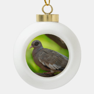 Bare Eyed Pigeon Ornament