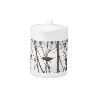 Bare Limb Bird Teapot, By H.a.s. Arts Teapot at Zazzle