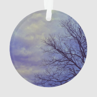 Bare Tree at Dusk Ornament