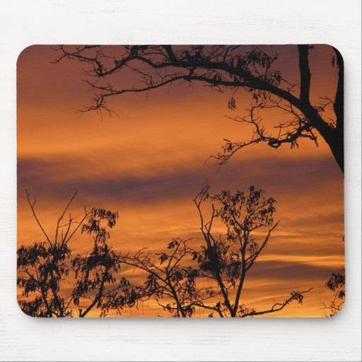 Bare Tree At Sunset Mouse Pad