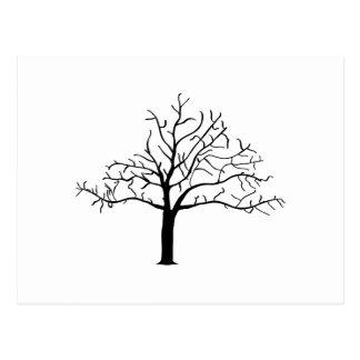 Bare Tree Design Post Card
