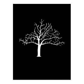 Bare Tree Design Post Cards