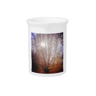 Bare Tree Drink Pitcher