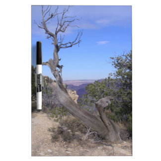 Bare Tree Grand Canyon Dry-Erase Boards