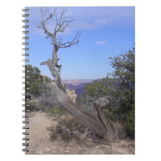 Bare Tree Grand Canyon Spiral Notebook